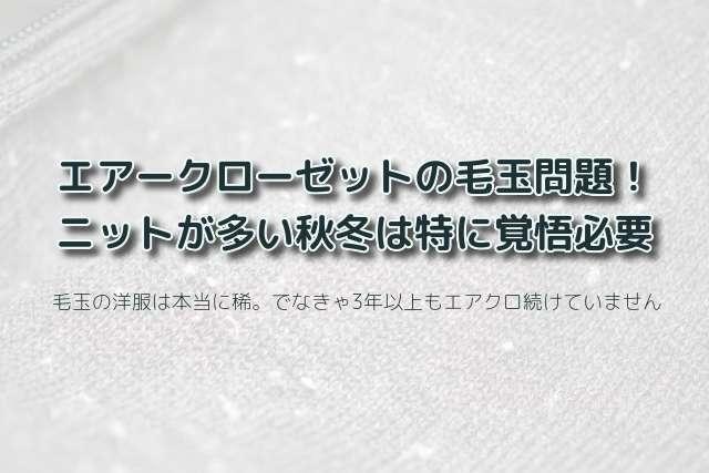 エアークローゼットの毛玉が気になる洋服公開!ニットが多い冬は要覚悟!